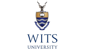 Wits LINK Centre and WitsX to offer a free online media course in October