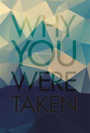 Book review: <i>Why You Were Taken</i>