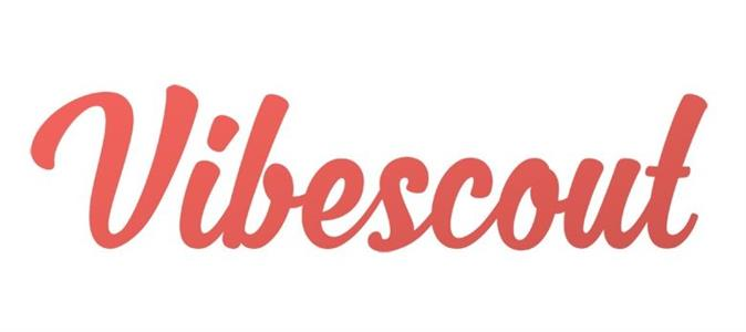 Getting to know <i>Vibescout</i>